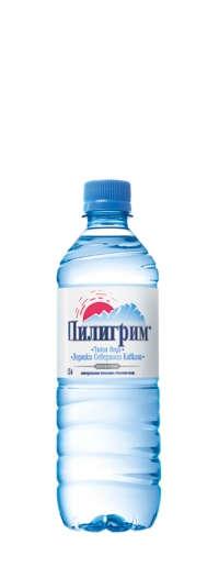Талая ледниковая вода «Пилигрим» 0,5 л. (упаковка из 12 шт.)